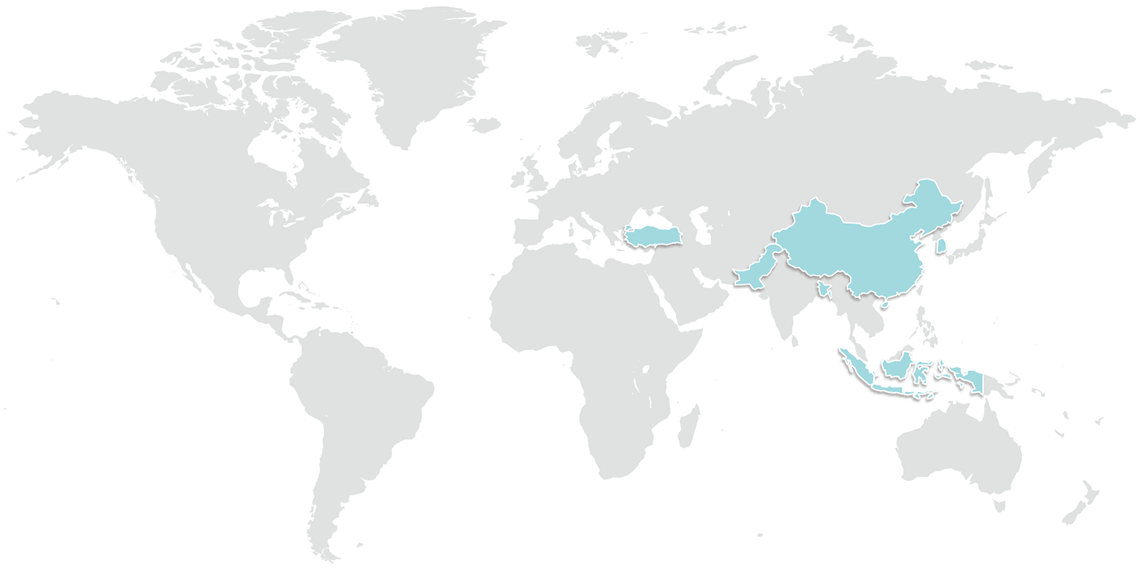 World map with Twinco presence